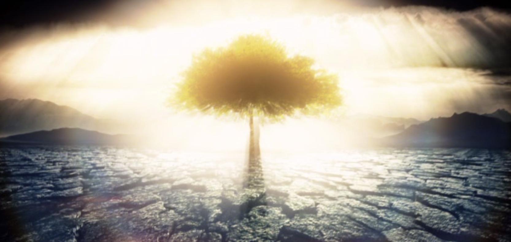 山達基相信心靈在物質之上嗎?